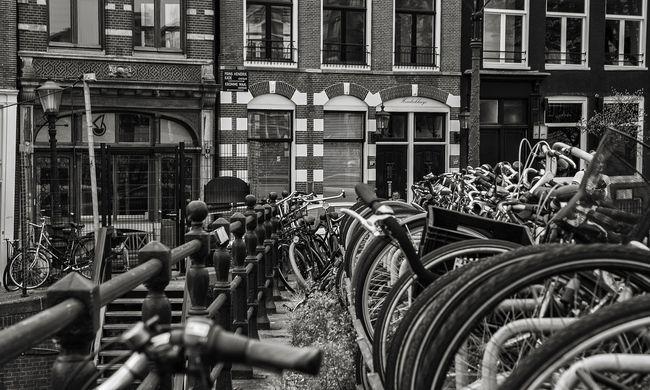 Teljesen kiakadtak a hollandok, elegük van már a nagy engedékenységből