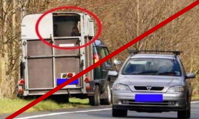 Nem vadásznak gyorshajtókra lószállítóból a rendőrök
