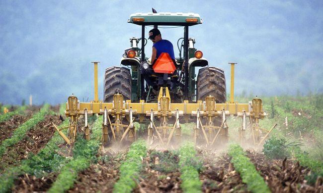 Évek óta nem volt ekkora drágulás a mezőgazdaságban, ezt a mi pénztárcánk is megérzi