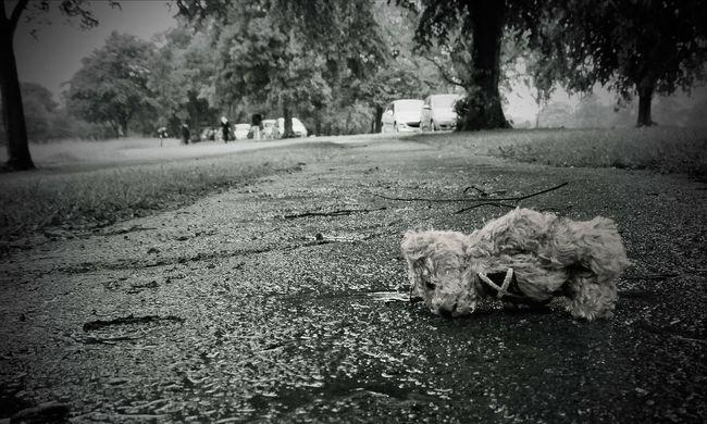 Brutális, ami a Hajdúságban történt: kiskorút itattak le és erőszakoltak meg az ismerősei