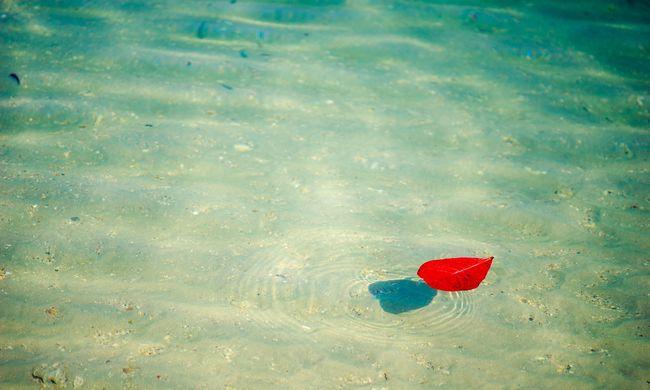 Holttestet találtak a Piroska-tóban, a búvárok már nem tudták megakadályozni a tragédiát