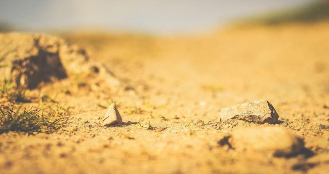Egyetlen csepp eső sem esett hónapok óta: bejelentették, hogy 100 százalékos a szárazság
