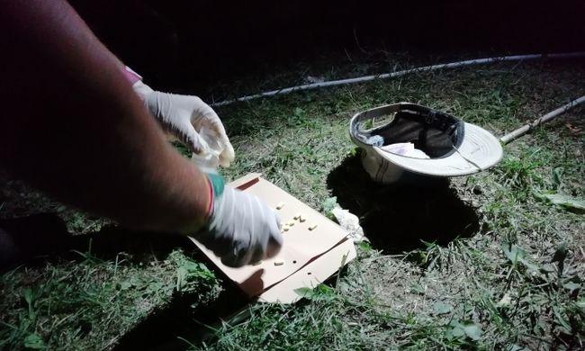 Botrány, amit egy olasz férfi művelt a Sziget Fesztiválon - intézkedtek a rendőrök