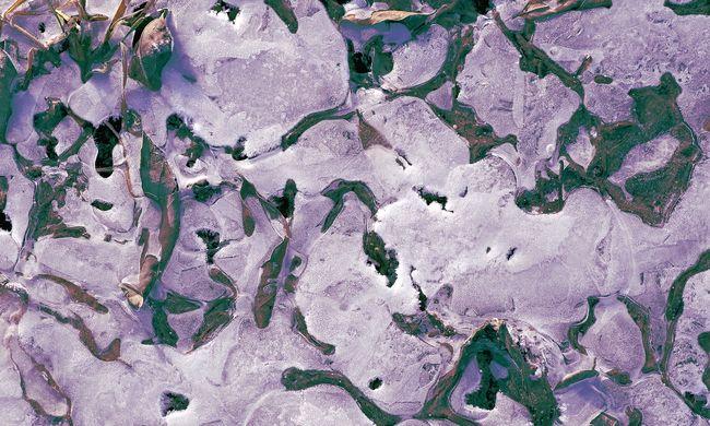 Végzetes következményei lehetnek, ha tovább olvad a jég: rég eltűnt betegségek élednek újra