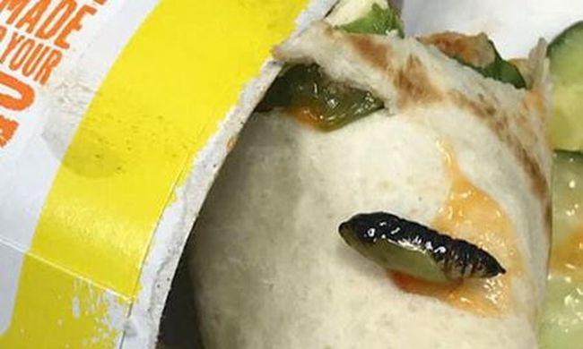 Gyomorforgató, undorító ételt szolgáltak fel a gyorsétteremben - fotó