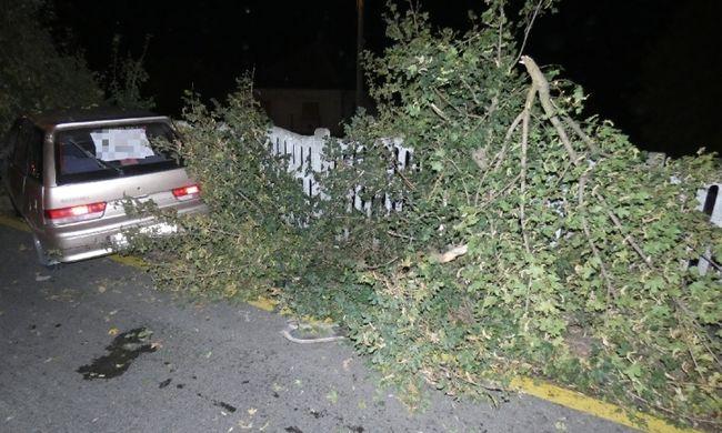 Pizzafutár autójával balesetezett, így bukott le a bűnöző Gödöllőn