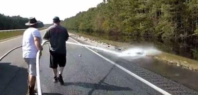 Megrendítő videó: elpusztult halak lepték el az utat, így csapott le az ítéletidő