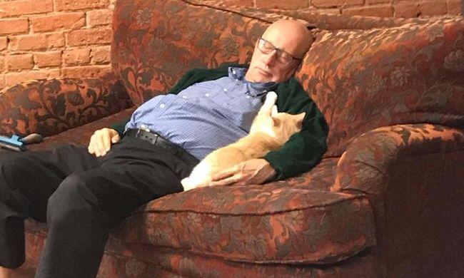 Ennél cukibb ma nem lesz: cicákkal alvó nyugdíjas tette híressé ezt a menhelyet