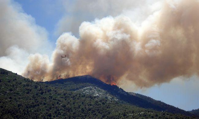 Biztonsági kockázatot okoz szomszédainknál, hatalmas terület égett le a múlt hónapban