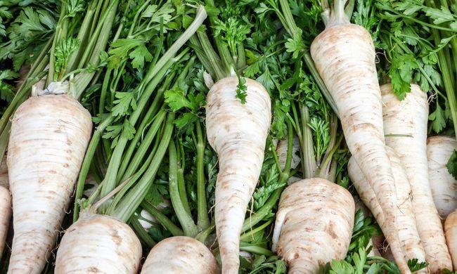 Ládákban hagyta a termőföldön a zöldséget: meglepő dologgal szembesült a királyhegyesi gazda