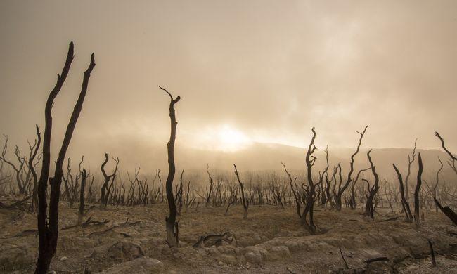 Az egészségügy és a gazdaság is veszélyben a világon: átfogó jelentés a klímaváltozásról