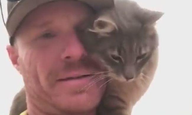 Ő most a leghálásabb cica, így bújt megmentőjéhez - videó