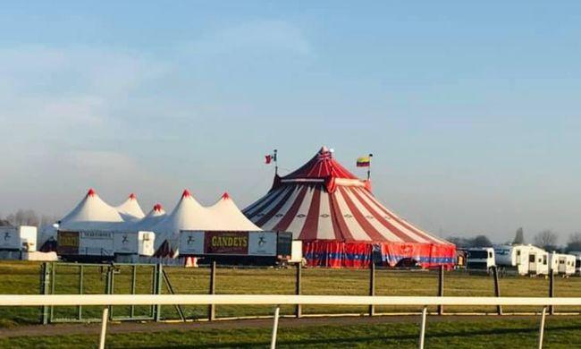 Szörnyű baleset történt a cirkuszban, sokkot kaptak a nézők