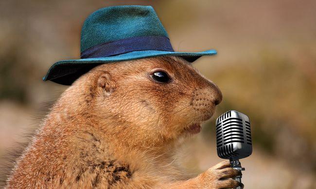 Énekléssel az egészségért? Napi tíz perc dalolás csodákat tehet