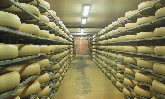 Ha igazán finom sajtot akar venni, akkor kérdezze meg, hogy milyen zene szólt érlelés közben
