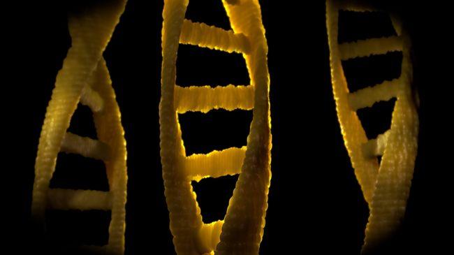 Beláthatatlan következményei lehetnek: nem szabad a gyerekek génjeit szerkeszteni a kutatók szerint
