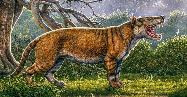 Félelmetesen nagy húsevő emlősre bukkantak a föld alatt: hétszer akkora volt, mint egy oroszlán